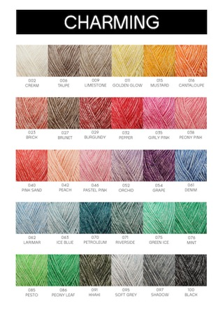 yarn-and-colors-kleurkaart-charming