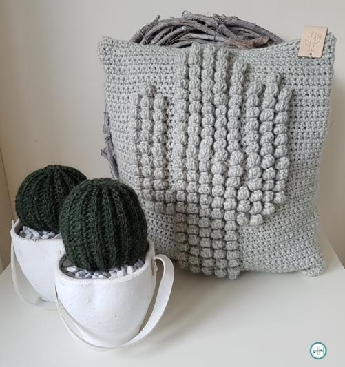 De Bezige Vingers Monique 63 Cactussen En Kussen De Haakhelden